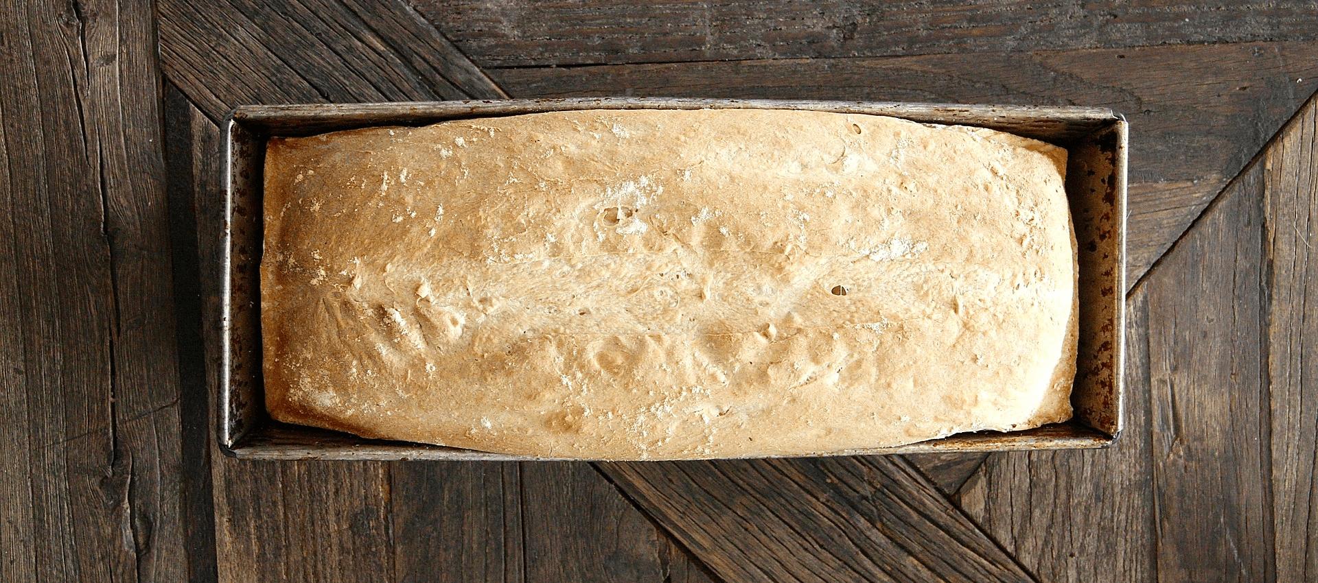 Daily Bread Consultancy
